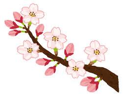 【いまココ見とけ!ビジネスコラム第57回 梅は咲いたか 桜はまだかいな? さくら予想はAIにお任せ?!】